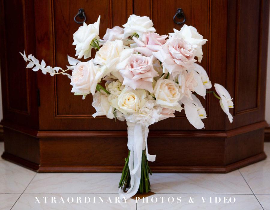 Xtraordinary Photos & Video 1076-9